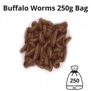buffalo-worms-250g-bag